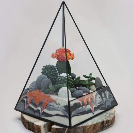 Флорариум с с кактусами пирамида