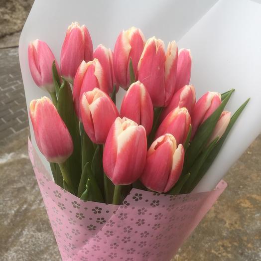 15 нежно розовых тюльпанов