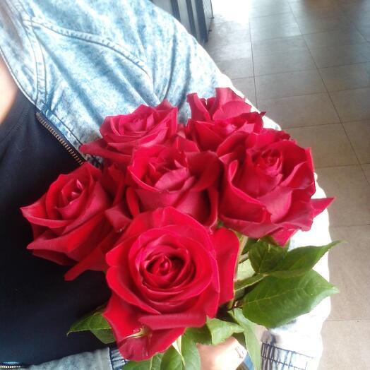 7 роз Эквадор под ленту