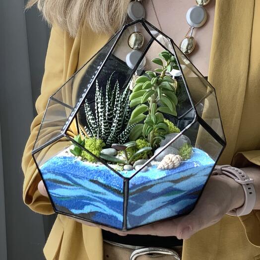 Флорариум Dallas Морской с суккулентами