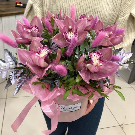 Орхидеи Любимые