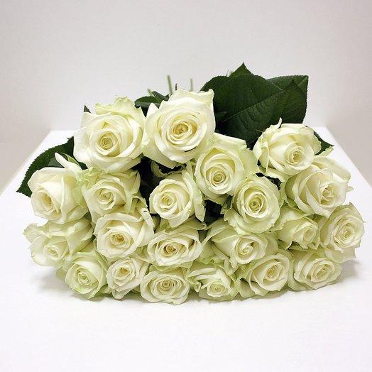 21 Белая роза 50 см