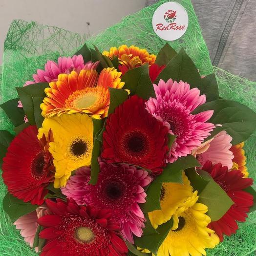 Радужные Герберы: букеты цветов на заказ Flowwow