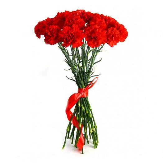 Гвоздики для Героев: букеты цветов на заказ Flowwow