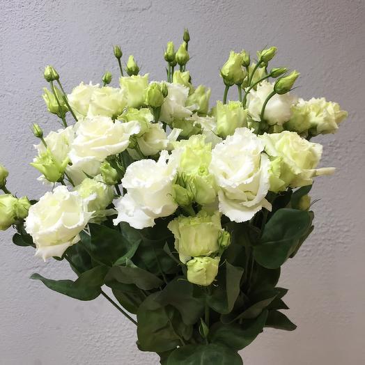 Букет из 9 эустом с атласной лентой: букеты цветов на заказ Flowwow