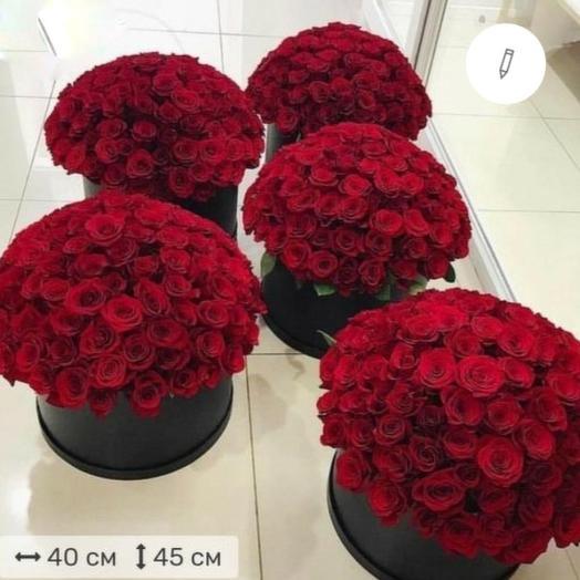 505 роз в шляпной коробке (5 коробок по 101)
