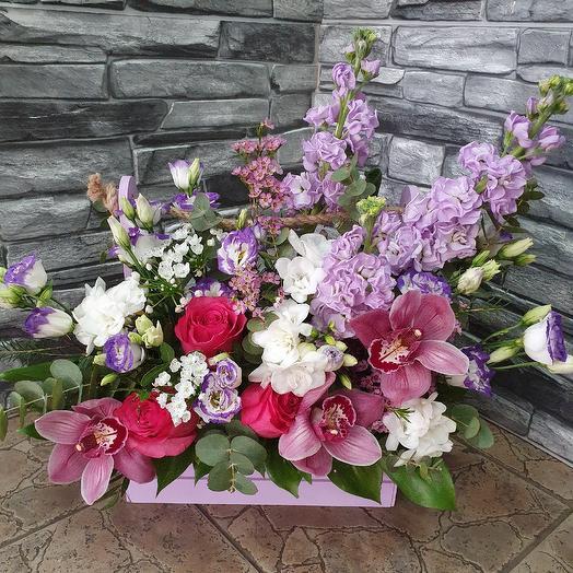Весенний ароматный ящичек с матиоллой,фрезией и орхидеей