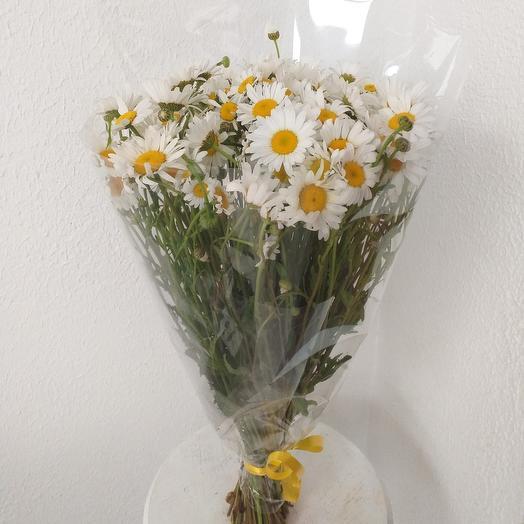 В. Букет ромашка: букеты цветов на заказ Flowwow