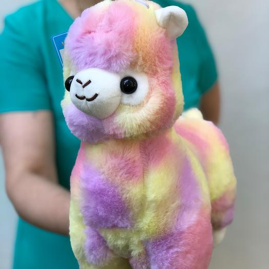 Радужная лама 🦙