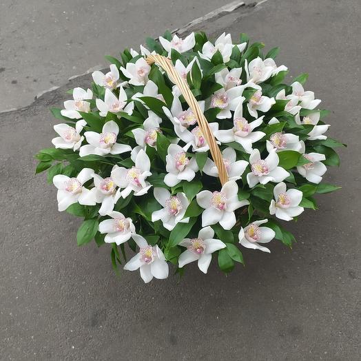 Белая орхидея в корзине