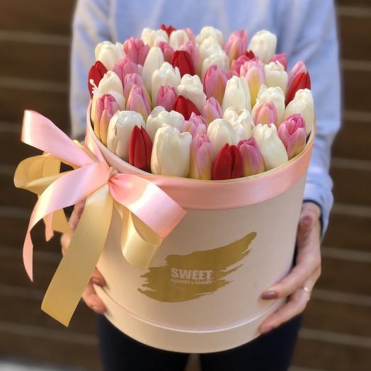 Flowers of tulips
