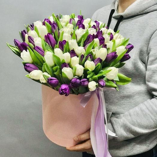 101 бело-фиолетовый тюльпан в коробке
