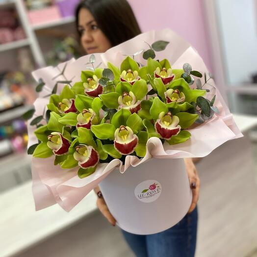 Стойкая орхидея