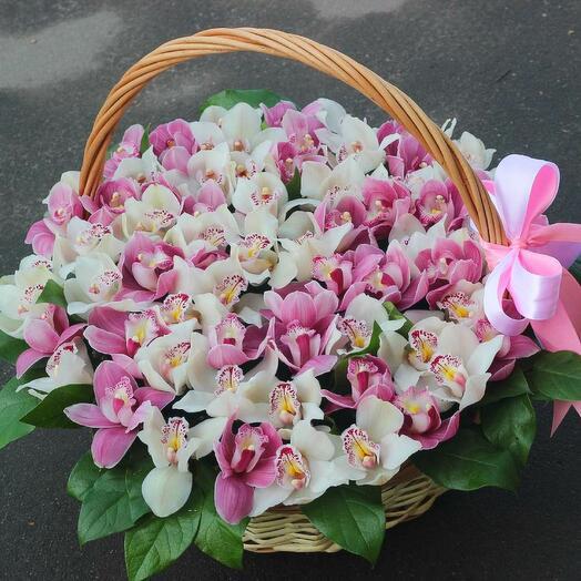Нежная корзина с орхидеей