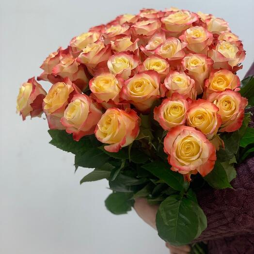 Роза Кабаре