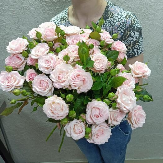 Шикарные кустовые розы