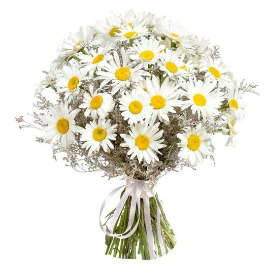 Bouquet of daisies: flowers to order Flowwow