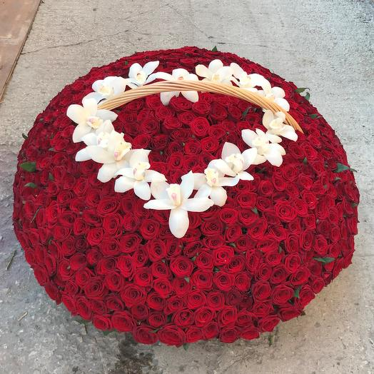 Корзины с цветами.  Красные Розы. 501 роза. N242