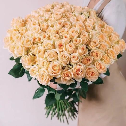 101 персиковая роза Пич Аваланж (70 см): букеты цветов на заказ Flowwow