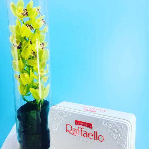Шикарный подарок: букеты цветов на заказ Flowwow