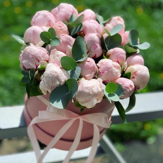 21 Пион в коробке: букеты цветов на заказ Flowwow
