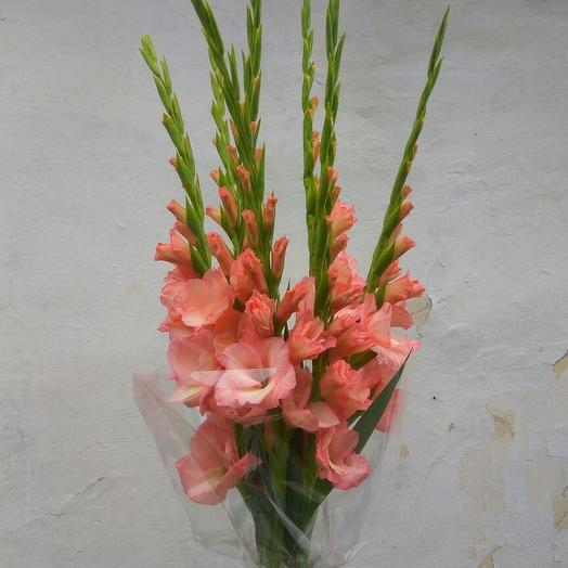 Букет гладиолусов: букеты цветов на заказ Flowwow