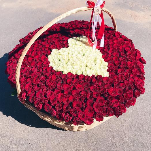 Корзина из 501 красной и белой розы: букеты цветов на заказ Flowwow