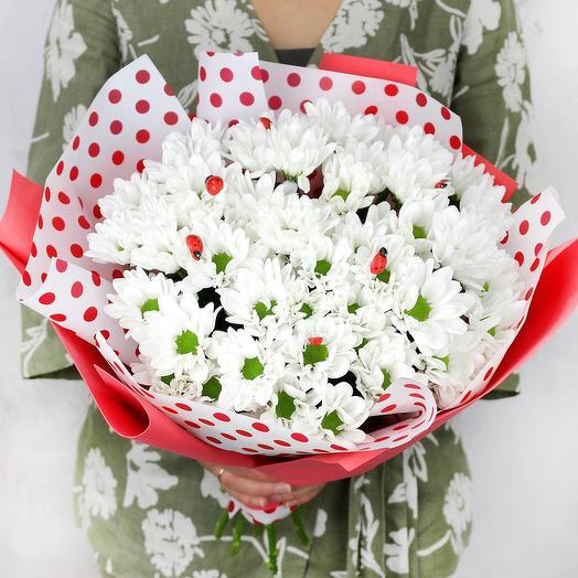 Букет из белой хризантемы с божьми коровками: букеты цветов на заказ Flowwow