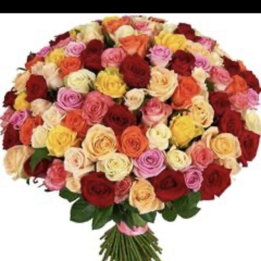 Розы101