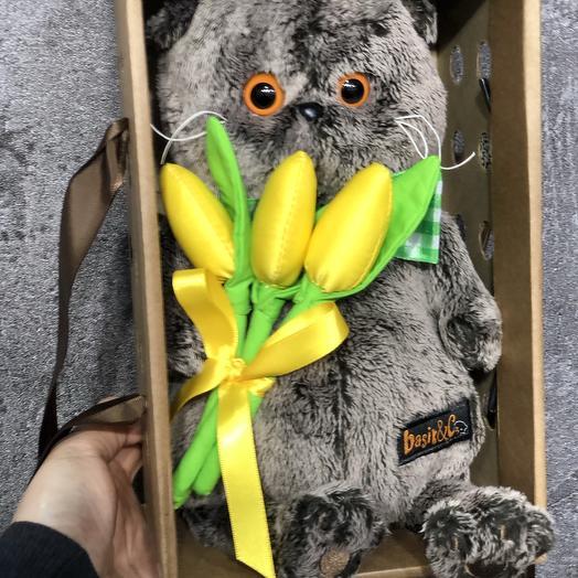 Кот Басик с тюльпанами: букеты цветов на заказ Flowwow