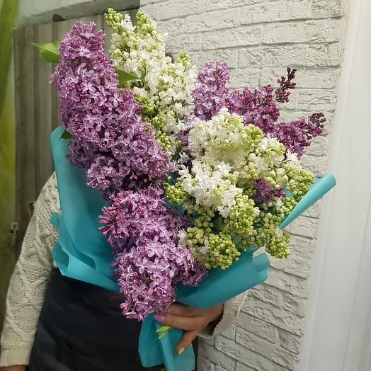Сортовая ароматная сирень: букеты цветов на заказ Flowwow
