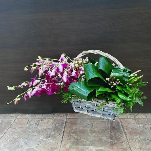 Корзина с ветками орхидей дендробиум