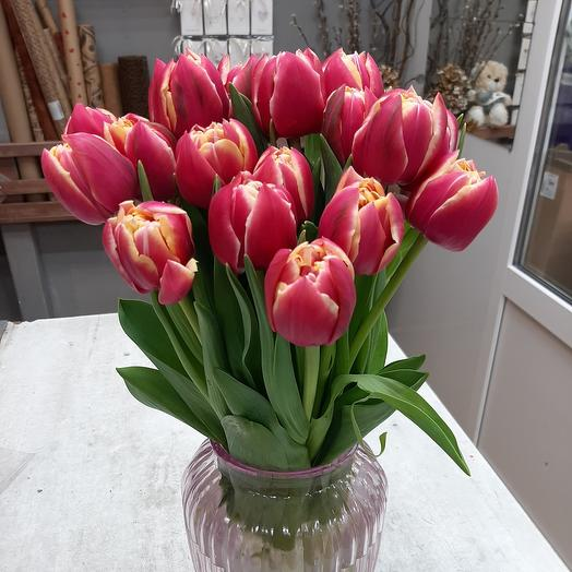 Тюльпан 19шт