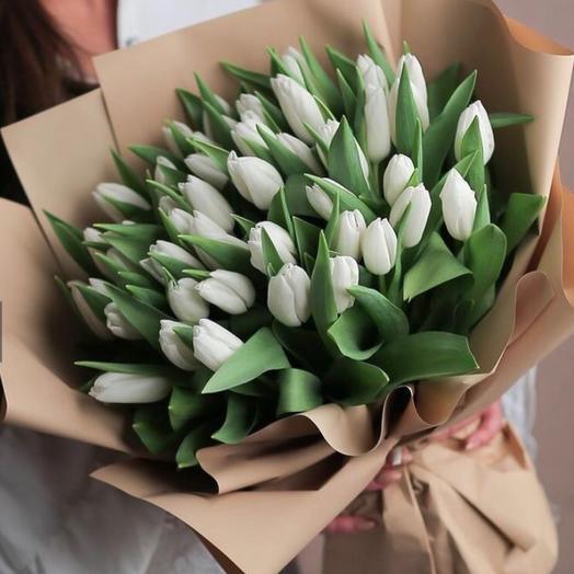 51 тюльпан Vip