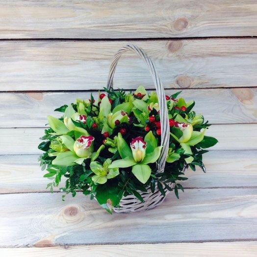 Корзина салатовых орхидей