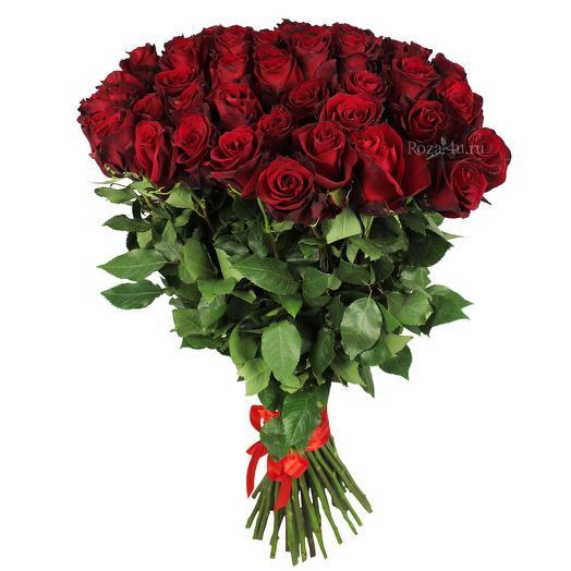 51 красная роза 70см Эквадор: букеты цветов на заказ Flowwow