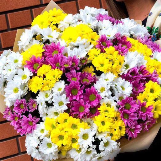 Букет из 25 разноцветных хризантем