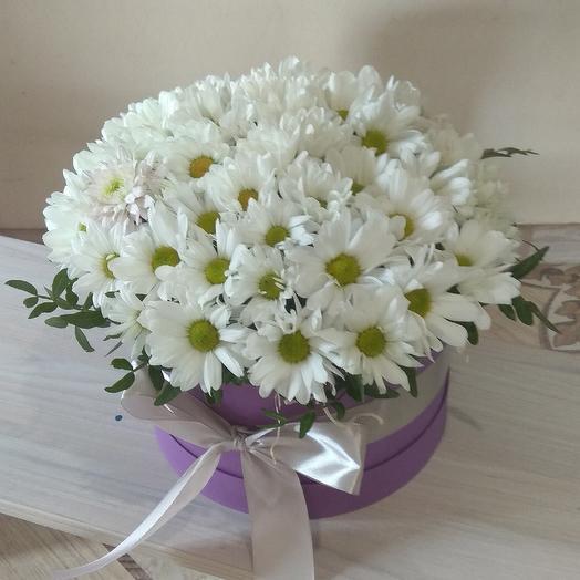 Ромашковая любовь: букеты цветов на заказ Flowwow