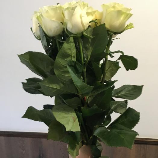 Роза Мондиаль 11 шт: букеты цветов на заказ Flowwow