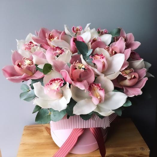 Коробочка с орхидеями: букеты цветов на заказ Flowwow