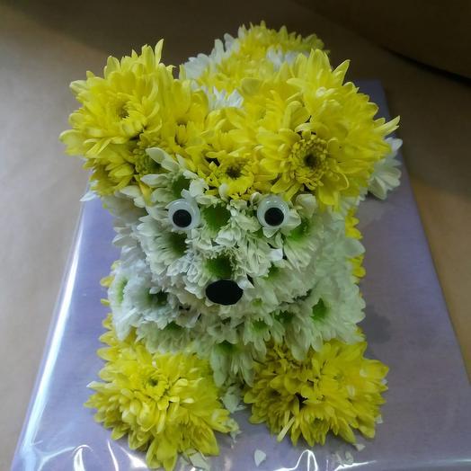 Композиция из кустовой хризантемы (микс): букеты цветов на заказ Flowwow