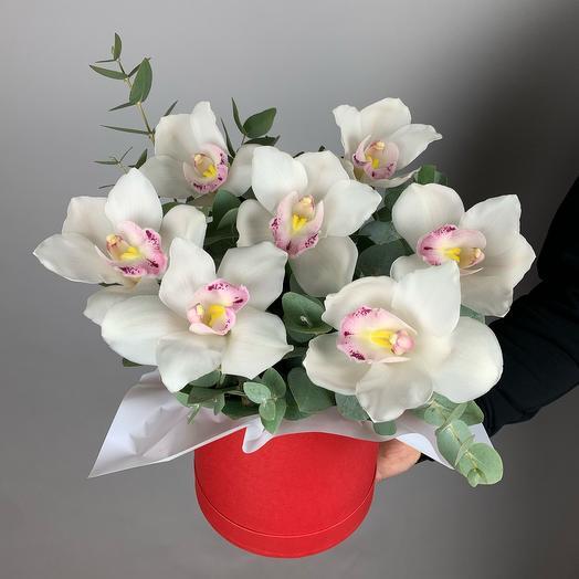 Коробка «Орхидея в красном»