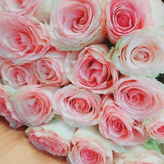 Розы Эсперанса