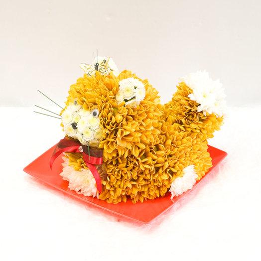 Фигура из цветов Кот: букеты цветов на заказ Flowwow