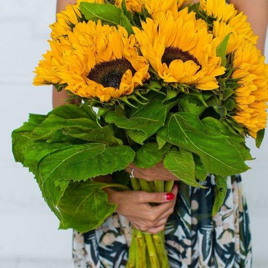 9 подсолнухов: букеты цветов на заказ Flowwow