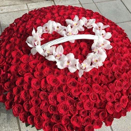 1001 Роза: букеты цветов на заказ Flowwow
