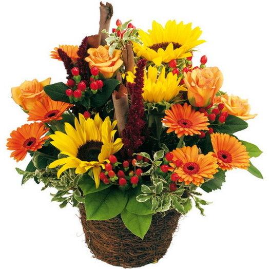 Искреннее пожелания: букеты цветов на заказ Flowwow