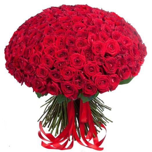201 роза Эквадор
