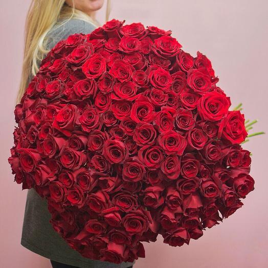 101 роза Explorer: букеты цветов на заказ Flowwow