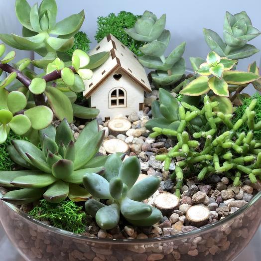 Мини- садик «Дом в лесу»: букеты цветов на заказ Flowwow